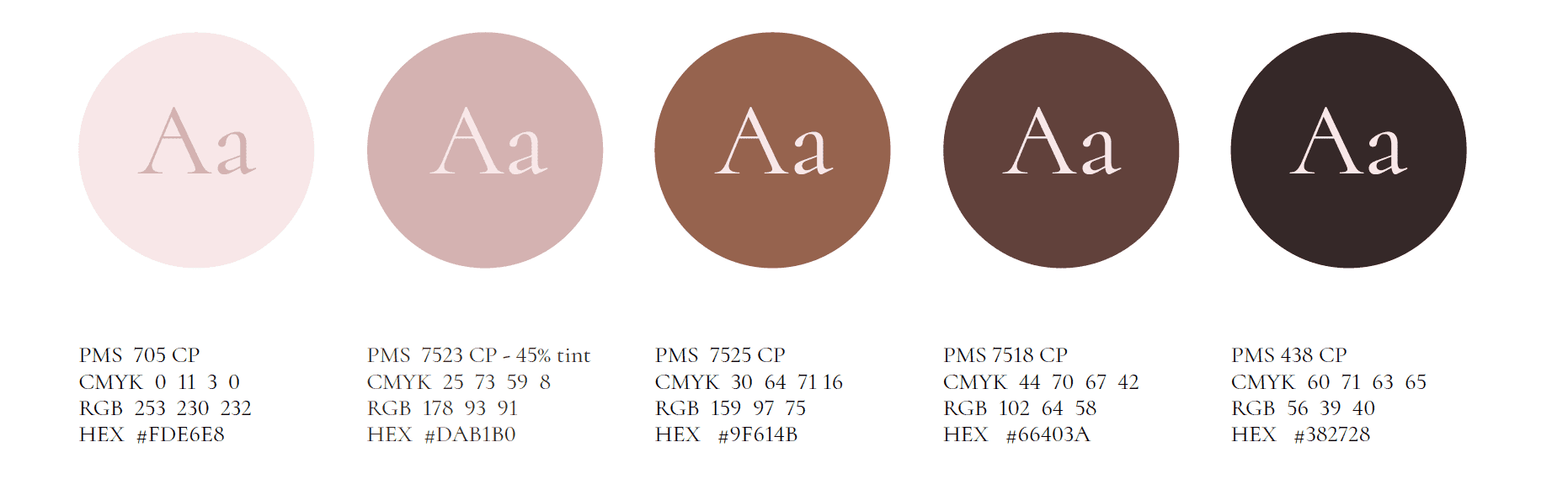 Color Palette - Brand Identity Example